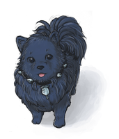 DMMd: Extra fluffy Ren by nranola