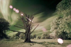 A flare for infrared by DR1983