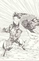 Sabertooth vs Wolverine by LakLim