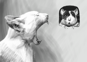 A Game of Cat and Rat by CalSlater