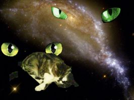 cat space by ezziethenekolover