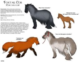 Foxtail Cob horse by pookyhorse