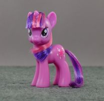 Pony Hairstyling - Twilight Sparkle by Wes-the-Crayon