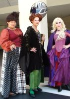 Witch Cosplays from Hocus Pocus at D23 2013 by trivto