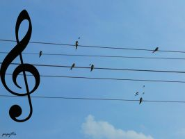 Let's sing together by pepytta