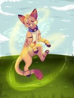 Cat for competition. by Dafkaudavka
