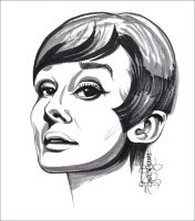 Audrey Hepburn 2 by Lui-freelancer
