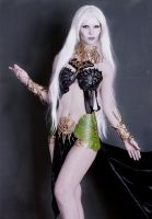 cosplay goddess Shilen.not finished. Lineage II by Nemu013