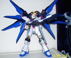 Strike Freedom Gundam 1-100 HG by Renegade-V