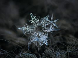 Snowflake of 19 March 2013 by ChaoticMind75