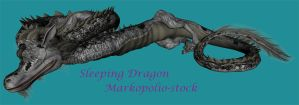 Eastern Dragon 1 - Feb 10 08 by markopolio-stock