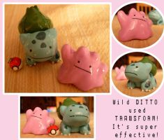 DITTO by Dreams-of-Wings
