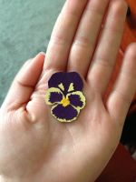 Pressed Pansy Paper Cut-Out by Udavrajati