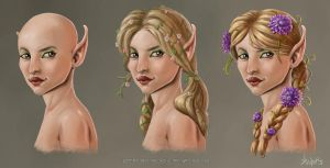 Female Elf hair style concepts by agoliversen
