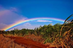 Maui Under the Rainbow by DudeWithCameraJP