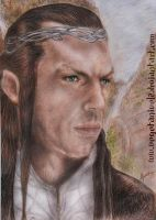 Elrond Final by vegetanivel2