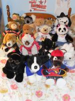 My Build A Bear Collection by AvatarRaptor