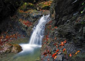 Waterfall Rarau by lica20