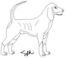 Free Male Coonhound Lineart by faery-dustgirl