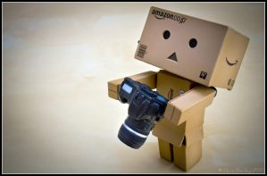 01 Danbo Arrives in the World with his Canon by bowley-chris