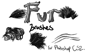 Fur Brushes for Photoshop CS2 by CelticMagician
