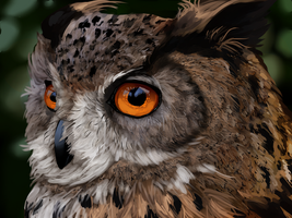 Owl Speedpaint by AvengingCoconut