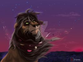 Old lion by Diego32Tiger