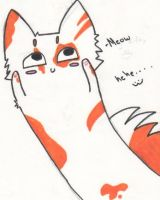 Meow by KickTheOlive