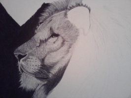 Ballpoint Lion WIP by Cindy-R