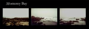 A Day at Monterey Bay by galad
