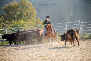 Cattle Work by Katha88