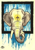 irrelephant by kirtatas