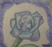 Blue Rose..in pencil by Jakfan15