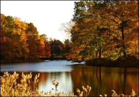 Autumn in New Jersey by d-i-e-g-o