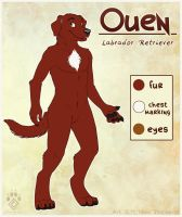 Ouen Reference Sheet by Idess