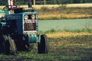 Tractor by kimberlyg