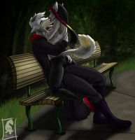 -In the Park- by odduckoasis