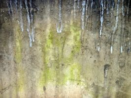 Free photo texture - Mossy frozen concrete wall #1 by croicroga