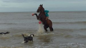 Horse Rearing In The Sea by StarCrossedPsycho