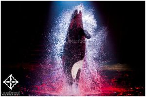Shrouded by the-seawolf
