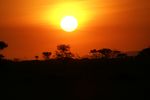African sunset in Tanzania by lomapatta-stock