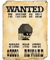 Wanted pervert by Jonicthedgehog