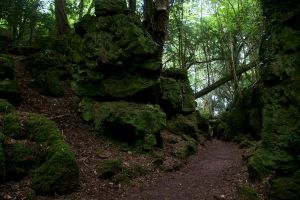 Puzzlewood 05 Stock by lokinststock