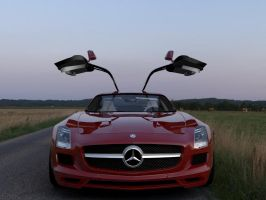 Mercedes SLS AMG by rulerz96