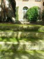 Dappled Stairs by BaronOfTheWillows