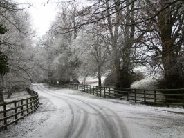 Knocklofty Winter Road by EoinFox