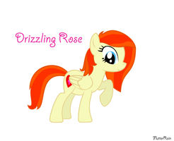 Drizzling Rose, my new OC by FlutterRain