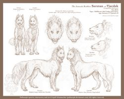 Sorstan and Tjardek: Ref by pallanoph