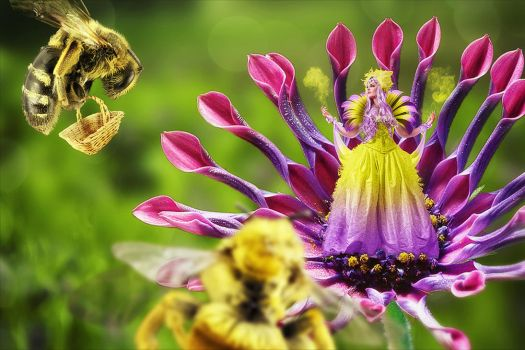 Bees and flowers by svaniland
