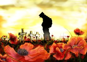 Where poppies blow by lumanens